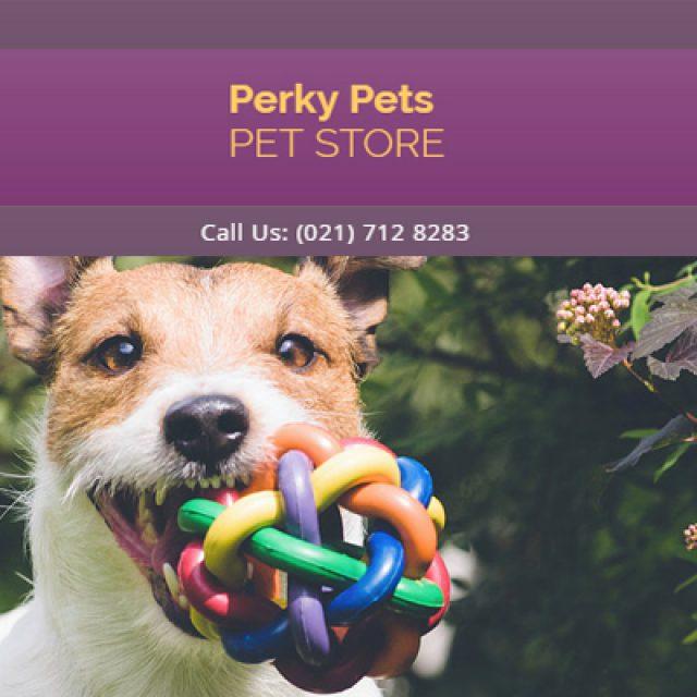 Perky Pets Strand